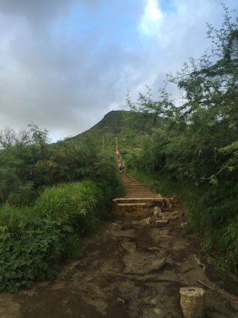 Koko Crater Railway Trail : The base of the Koko Head Trail