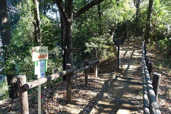 Shishigaya Castle Ruins