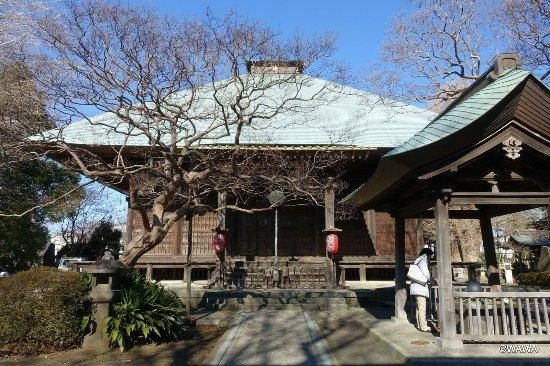 Site of Tachibanagunei