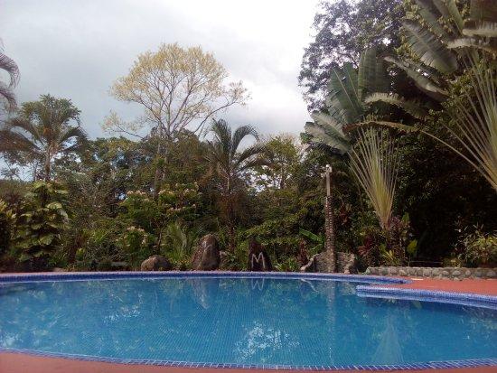 Tres Rios, Costa Rica: Hermosa Piscina