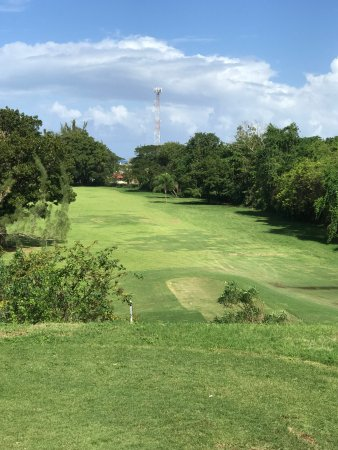 Runaway Bay Golf Club: par 4 hole 8 40ft + dropoff