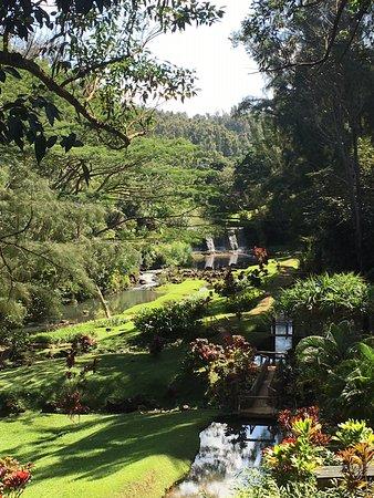 Kilauea, HI: Stone Dam Gardens