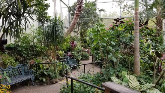 A Picture Of The Inside Of Butterfly Exhibit Florida Museum Of