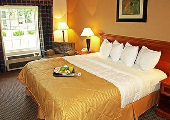 Clarion Inn Columbia-Airport: Guest room