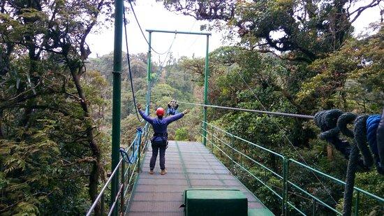 Santa Elena, Costa Rica: IMG_20180208_131510_large.jpg