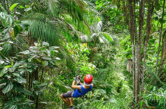 Private Mindo Zipline, Chocolate, Intiñan Equator Museum Tour