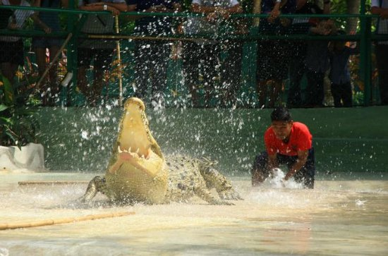 Langkawi Crocodile Adventureland...