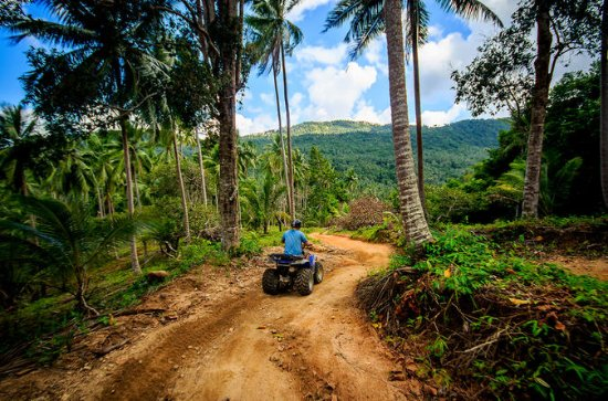 SAMUI QUAD TOURS