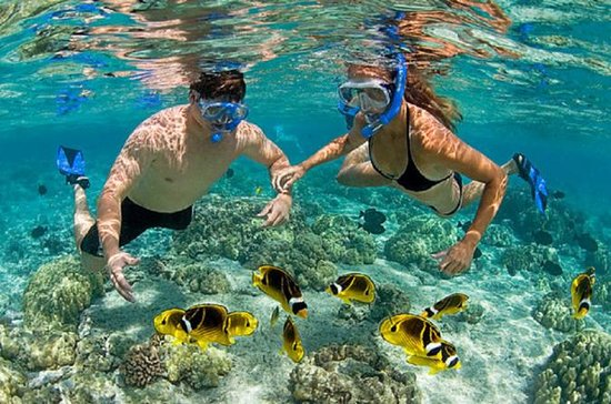 Bali Best Snorkeling at Blue Lagoon...