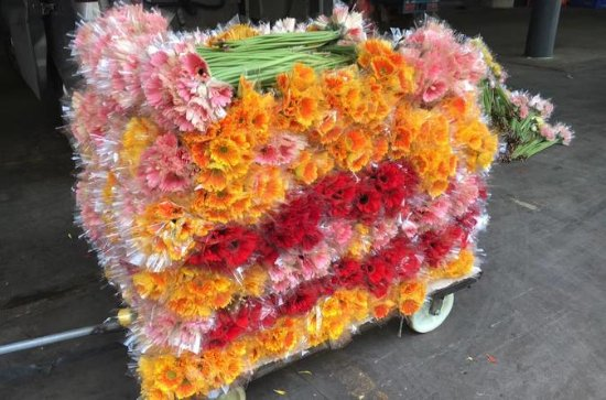Tour dei fiori di mezza giornata a