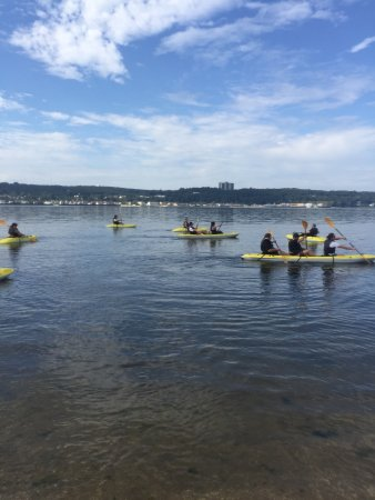 Sandy Hook Kayaks: Group Rentals and Tours! Single double and triple kayaks