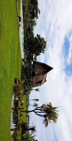 Warung D'Sawah : IMG_20180208_123351_812_large.jpg