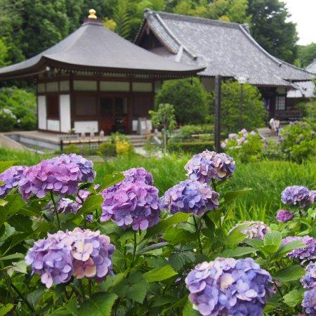 Shogakuji Temple
