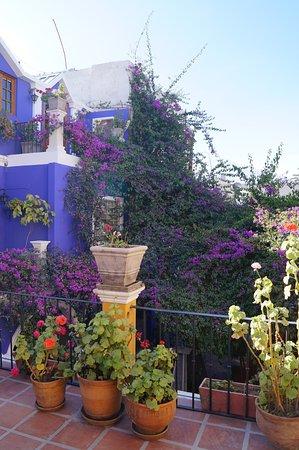 La Hosteria: Veel kleur