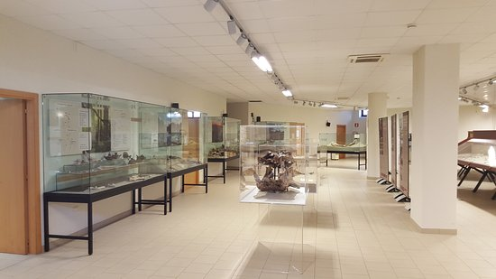 Mu.P.A. Museo Paleontologico Archeologico