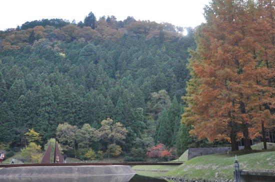 Muro Sanjo Park Art Forest: muroh sanjo park