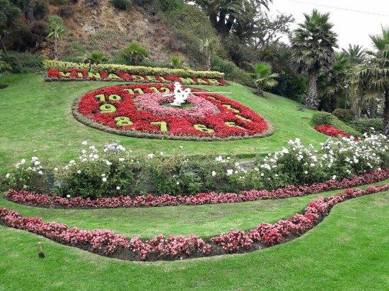 Flower Clock (Reloj de Flores)
