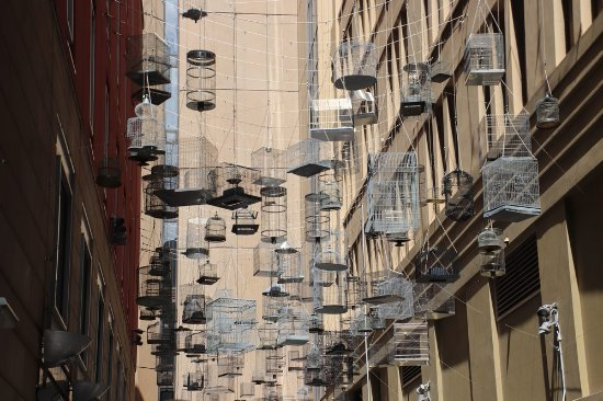 Cages Hanging Picture Of Forgotten Songs Sydney Tripadvisor