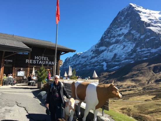 Restaurant Eiger Nordwand: the restaurant and the 'cow'