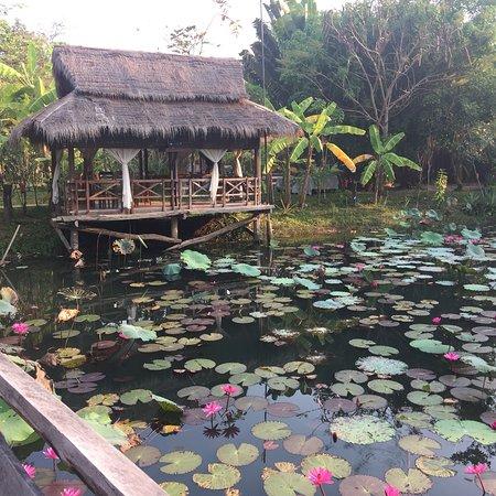 Maisons Wat Kor : photo0.jpg