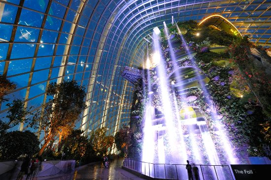 Gardens by the Bay Cloud Forest with the World\'s Highest Indoor ...