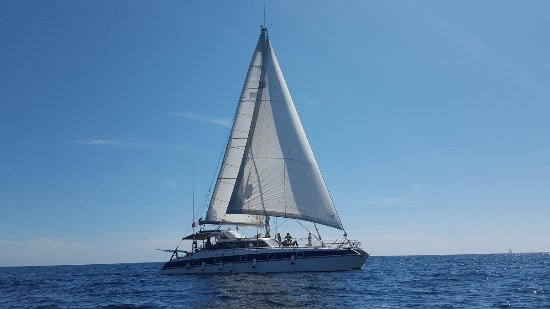 Les Anses d'Arlet, Martinique: Catamaran ATAO Plongée en navigation à la voile