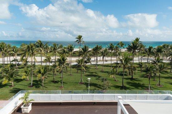 Penguin Hotel Miami Beach Tripadvisor