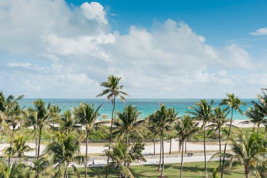 The Penguin Hotel South Beach Miami Beach Fl
