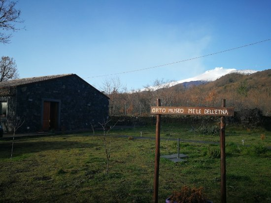 Sant'Alfio, Italy: IMG_20180204_082805_large.jpg