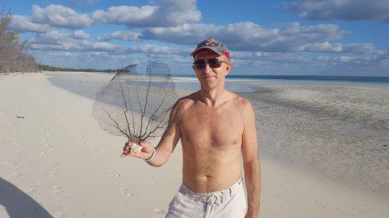 Gold Rock Beach: Такие вот интересные коралловые образования