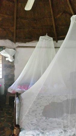 Mpulungu, Zambia: 20180129_095504_large.jpg