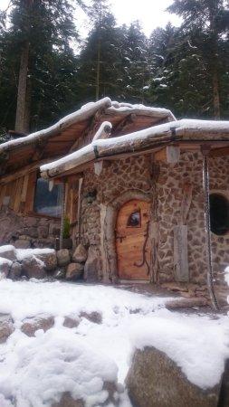 Cabane Hobbit vue extérieure cabane du hobbit - picture of clairiere aux cabanes
