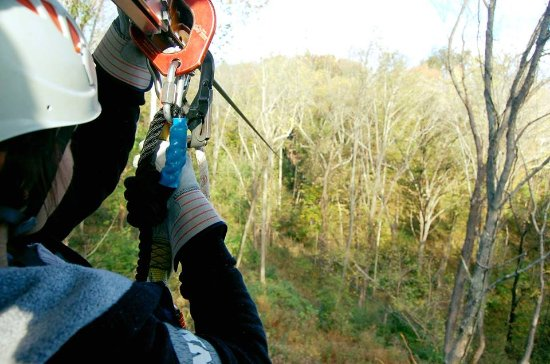 Petersburg, KY: Our continuous belay system ensures you're never unhooked from the course, even among the treeto