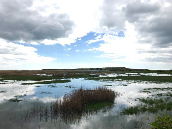 Christchurch, UK: Stanpit Marsh