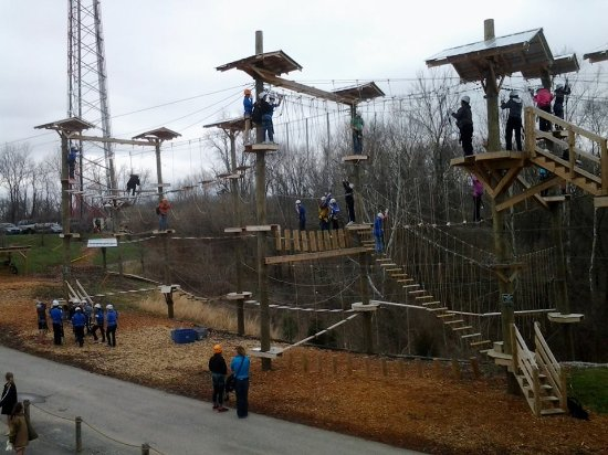 Petersburg, KY: For a little variety, try our aerial obstacle course with options for both children and adults.
