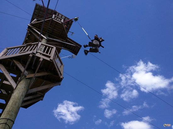 Screaming Raptor Zip Lines 사진