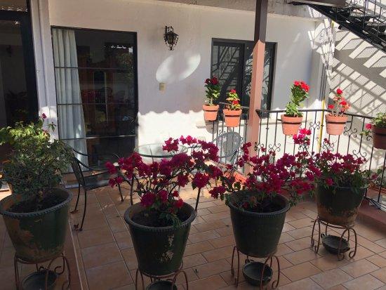 Oaxaca Ollin: facing my room.