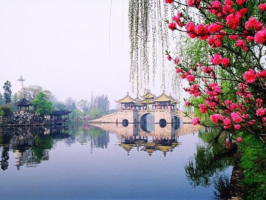 写真揚州市枚
