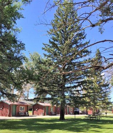 Búfalo, WY: Grounds, backyard picnic areas