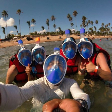Guarajuba, BA: Prontos para descobrir a vida marinha!