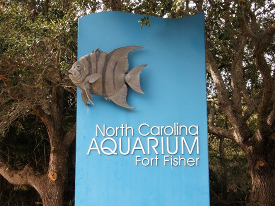 Kure Beach, Carolina del Norte: Ft Fisher aquarium is near the Ft Fisher State Historic Site and the Ft Fisher Recreation Area.