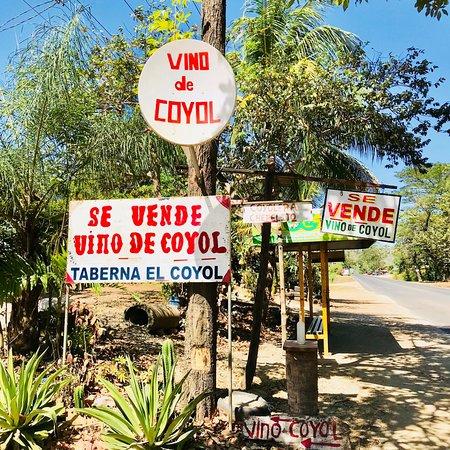 Naranjo, Costa Rica: Coati Tours