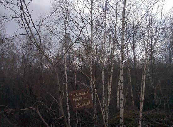 Iskitimskiy District, Russie: Россия, Искитимский район, Шипуновский квартал