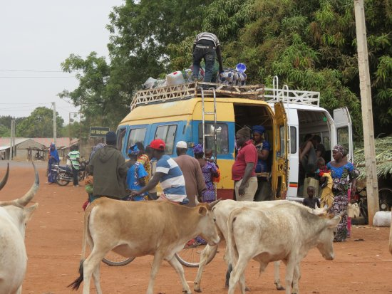 lively area around Janjanbureh ferry crossing