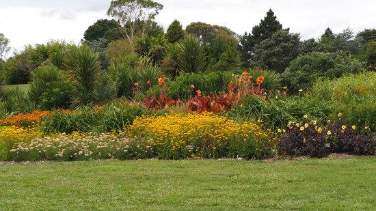 Auckland, New Zealand: Part of the garden display