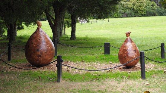 Регион Оклэнд, Новая Зеландия: Art piece as part of the sculpture garden