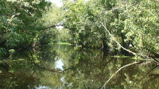 DeLand, فلوريدا: Historic Logging Canal