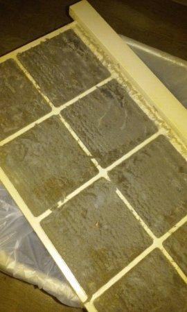 InTown Suites Savannah : dirty AC filter