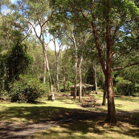 Killarney, Австралия: photo0.jpg