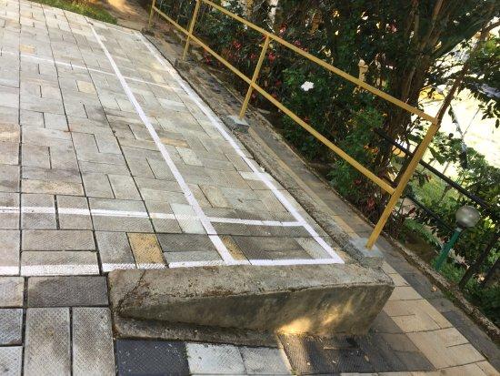 Karapuzha Village Resort: They call it Badminton court - is it safe ?